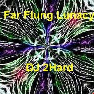 DJ 2Hard   Far Flung Lunacy