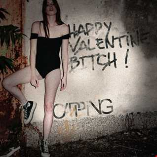 Happy Valentine Bitch