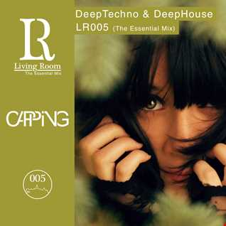 Capping - Living Room 005 (LR005)