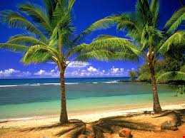 Exotic locations Chill out Mix 5
