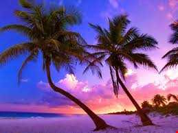 Exotic locations Chill out mix 3