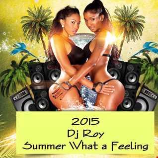 2015 Dj Roy Summer What a Feeling