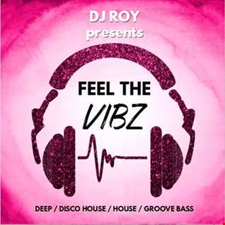 2017 Dj Roy Feel the Vibz