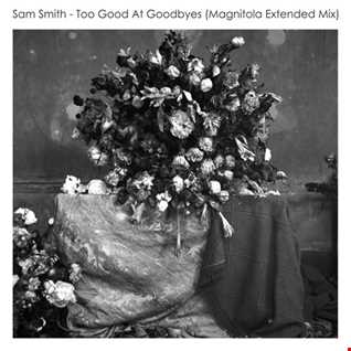 Sam Smith - Too Good At Goodbyes (Magnitola Extended Mix)