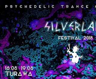 silver lake  festival 2018 psychedelic trance  LaMore 19.08.