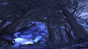 forest psytrance in MBR  malina psy live.08.09.2013