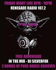 FRIDAY NIGHT LIVE WITH DJ SILVERFOX