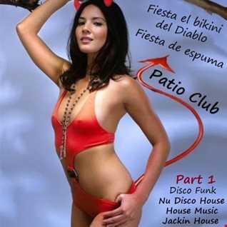 029 - Disco Funk - Nu Disco House - House Music - Jackin house