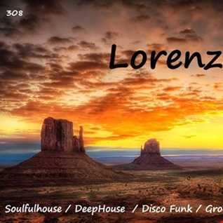 308 - Soulfulhouse - Deephouse - Disco Funk - Groovy House  - House Music