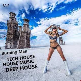 317 - DEEPHOUSE -  HOUSE MUSIC - TECH HOUSE