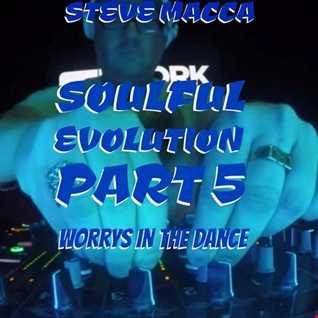 STEVE MACCA'S SOULFUL EVOLUTION PART 5