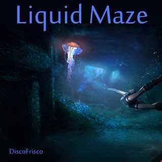 Liquid Maze