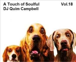 A Touch of Soulful Vol.18