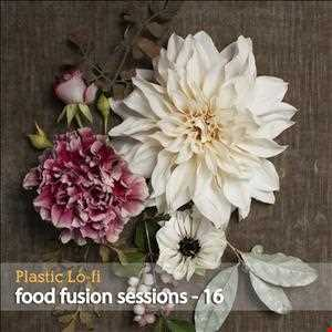 Food Fusion Sessions 16