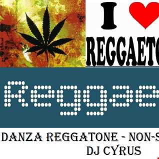 Danza Reggaeton   Nonstop Mix By DJ Cyrus