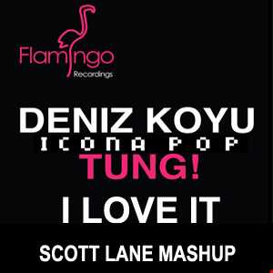 Deniz Koyu Vs Icon Pop - Tung I Love It (Scott Lane Mashup)