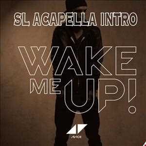 Avicii (ft Aloe Blac)   Wake Me Up (SL ACAPELLA INTRO)