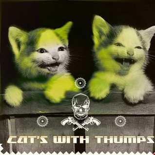 vaKANga   CAT'S WITH THUMPS   (altitude mountain) . cologne   nov. 2o14
