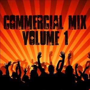 Mini Commercial House & Chart Remixes Mix : Volume 1