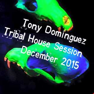 Latest december mixes latest tracks for Tribal house music 2015