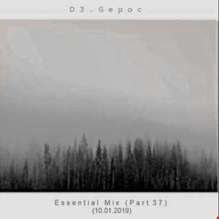 DJ.Gepoc   Essential Mix (Part 37) (10.01.2019)