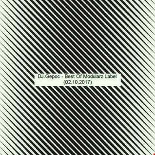 DJ.Gepoc   Best Of Modularz Label (02.10.2017)