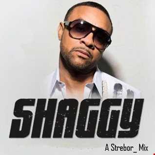 Shaggy Mix