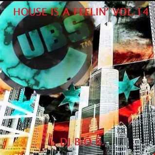 HOUSE IS A FEELIN' VOL.14 DJ B.O.B.