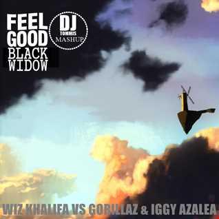 Feel Good Black Widow (Wiz Khalifa vs Gorillaz & Iggy Azalea) (DJ Tommis Mashup)
