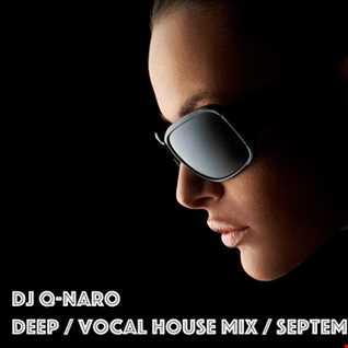 Q-Naro - Deep / Vocal House Mix September 2017