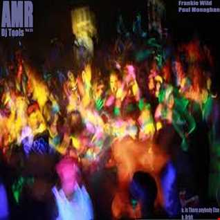 Frankie Wild Is There Anybody Else Promo Cut AMR DJ Tools Vol 35