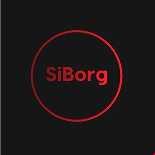 SiBorg Jungle/DnB