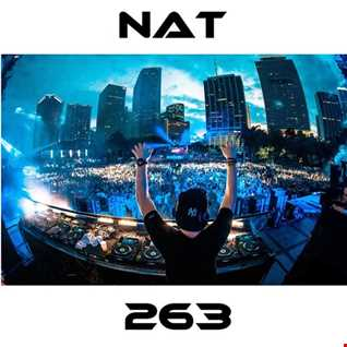 NAT    HOUSE SESSION 263 Tribute to Avicii (30.04.2018) 72'20''