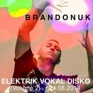 BrandonUK - Rhythm Silhouettes 01/05 - Elektrik Vokal Disko Volume 2