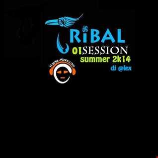 Tribal Session (Summer 2K14)