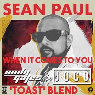 Sean Paul - When It Comes To You (Andy Gates & JOCO 'Toast' Blend)