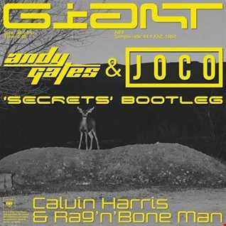 Calvin Harris & Rag'n'Bone Man - Giant (Andy Gates & JOCO 'Secrets' Bootleg)