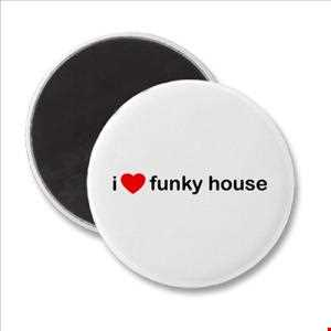 NZK's Funkylicious 2013 Volume 3