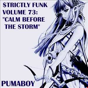 "$trictly Funk Volume 73: ""Calm Before The Storm"" (Tech House, 128 BPM, 1h15min)"