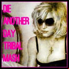 Die Another Day- Tribal Mashup