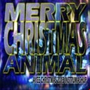 MERRY CHRISTMAS ANIMAL   Ayee Christmas Instrumental Mashup 2013