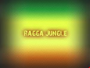 ragga jungle 03 15 13 j tekjunky