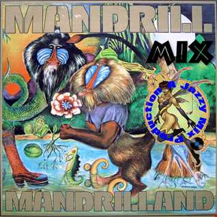 Mandrill in Mandrill land Mix By A Jazzy Mix Production nyc