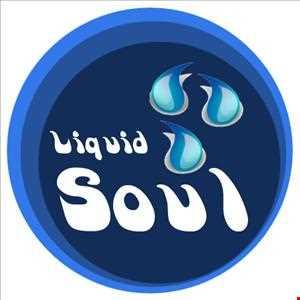 Liquid Soul Vol.11 (28.07.2013)