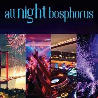 Night In Bosphorus
