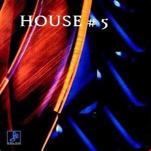 9 -  Progressive House 3