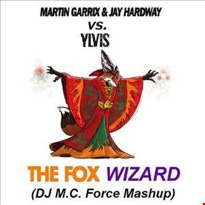 Martin Garrix & Jay Hardway vs. Ylvis - The Fox Wizard (DJ M.C. Force Mashup)
