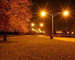 Deep Autumn Scenery