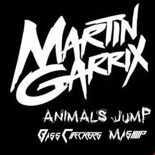 Matin Garrix - Animals Jump (BassCheckers Mashup)