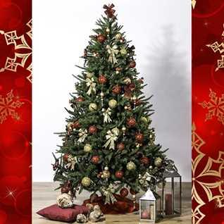 Buon Natale Da Micky DJ